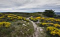 Haut-Languedoc landscape, Rosis cf02.jpg