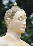 Head of a Buddha image.jpg