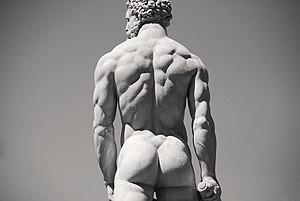 Hercules and Cacus - Hercules (detail)