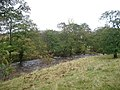Hermitage Water, near confluence with Whitrop Burn - geograph.org.uk - 70146.jpg