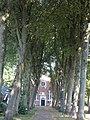Hervormde kerk in Oostwold - 8.jpg