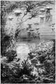 Hetzel Magasin1903 d055 Monographies végétales.png