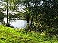 Higham Farm Ponds - geograph.org.uk - 1015203.jpg