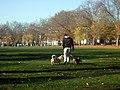 Highbury Crescent and Fields - geograph.org.uk - 614946.jpg