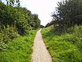 Highfield country park - south path.jpg