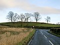 Hilltop Trees Near Symington - geograph.org.uk - 324438.jpg