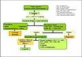 Hipertransaminasemia aguda.jpg