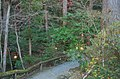 Hodosan Shrine(Mt. Treasure-climb Shrine) - 宝登山神社 - panoramio (6).jpg