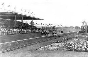 Hialeah Park Race Track - Hialeah Park, circa 1930