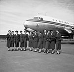 Hostessen DC-6 1952.jpg