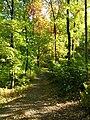 Hostivař Forest, Prague Hostivař.jpg