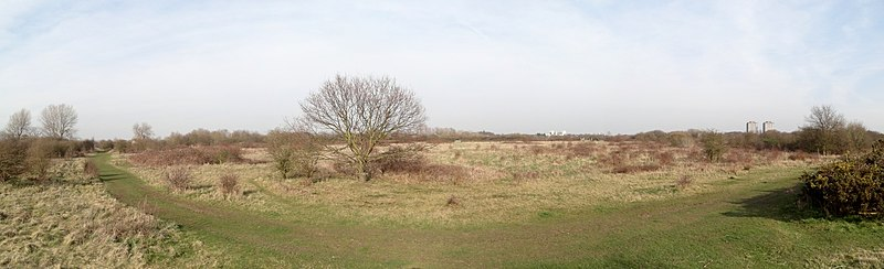 Panorama from 4 photos in Hounslow Heath, west London.