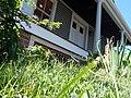 House NJ Kenilworth NJ.JPG