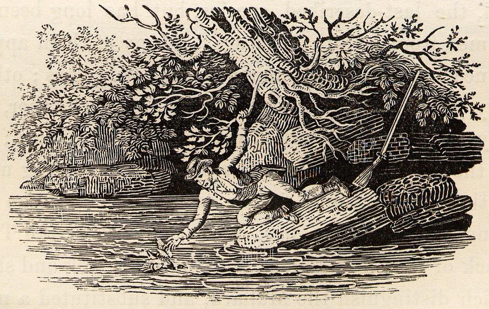 Hunter Precariously Retrieving Duck from River tail-piece in Bewick British Birds 1804