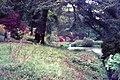 In Leonardslee Gardens (geograph 4819581).jpg
