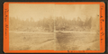 Indian Rock. Phillips, Maine, from Robert N. Dennis collection of stereoscopic views.png