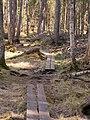 Ingobokällornas naturreservat 01.jpg
