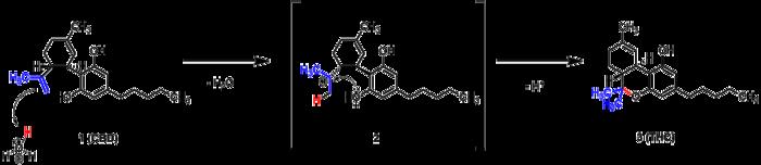 Intramolekulare cyklisierung von CBD zu Δ9-THC