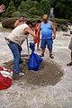 Introdução do cozido na terra vulcânica onde o mesmo se irá cozer. Furnas, Povoação, ilha de São Miguel, Açores.JPG