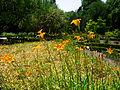 Jardín Botánico.jpg