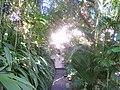 Jardim do Museu Antonio Parreiras - panoramio - Marcio Sette.jpg