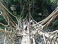 Jembatan akar Kampung Baduy.jpg