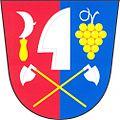 Jezeřany Maršovice CoA.jpg
