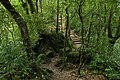 Jingualiao Stream Fish and Fern Trail (坪林金瓜寮魚蕨步道) - panoramio (2).jpg