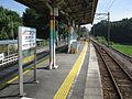Joden-Shinzo-kekkan-center-station-platform-20100907.jpg