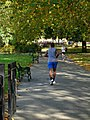 Jogging in Kennington Park - geograph.org.uk - 1009319.jpg