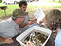 John Cantrell, Jim Killebrew, and Janet Smith sorting macroinvertebrate stream animals (4947682479).jpg