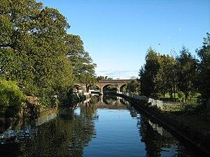 Glebe, Sydney - Johnstons Creek