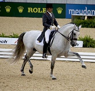 2010 FEI World Equestrian Games - Dressage at the 2010 WEG