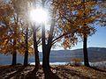 KASTORIA- lake (35).jpg