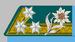 Kadett k.k. Gebirgstruppe 1908-14.png