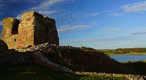 Kalø Castle - Image: Kalø Slotsruin med flok af kragefugle