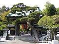 Kamakura Hasedera Sanmon 201004.jpg