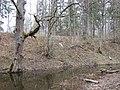 Kastrānes pilskalns, Suntažu pagasts, Ogres novads, Latvia - panoramio - M.Strīķis (8).jpg