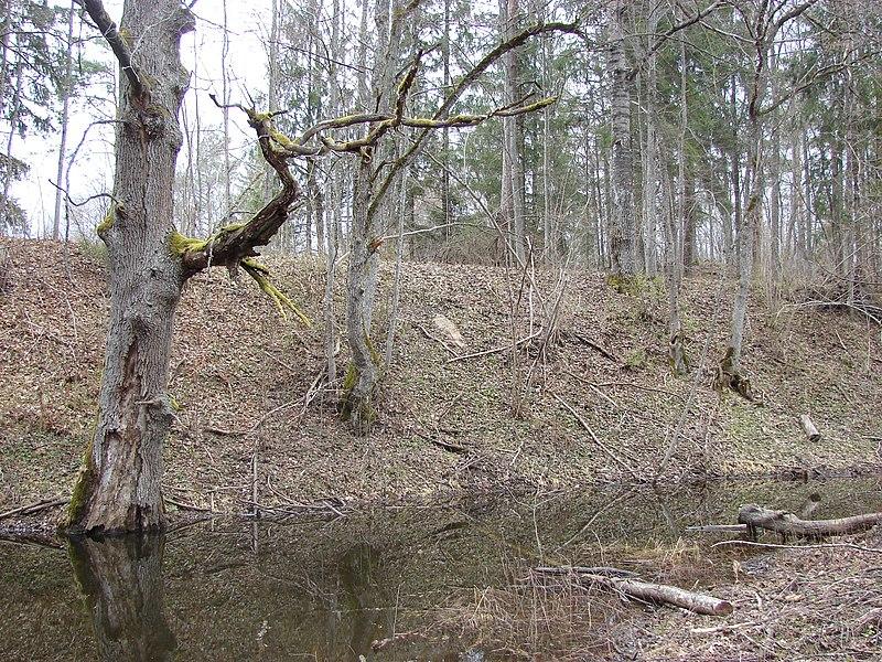 File:Kastrānes pilskalns, Suntažu pagasts, Ogres novads, Latvia - panoramio - M.Strīķis (8).jpg