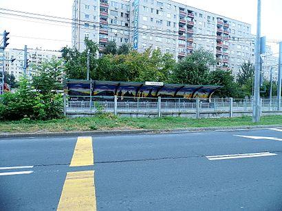 Menetrendek Kaszásdűlő tömegközlekedéssel