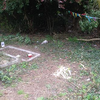 Kate Marsden - Marsden's grave has been rediscovered and cleared