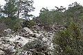 Kattoudhia-Mylikouri Nature Trail - panoramio (24).jpg