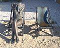 Katwijk kunstwerk vrouw in ligstoel.jpg