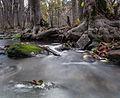 Keila jõgi. 03.jpg