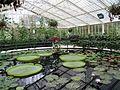 Kew Gardens 0386.JPG