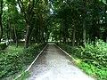 Khotyn Chernivetska-Khotynskyi park-avenue.jpg