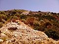 Kifisia, Greece - panoramio (21).jpg
