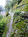 Klettersteig oberhalb Mayerhofen.JPG
