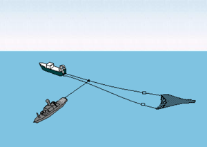 Cod Wars - The primary objective of the Icelandic Coast Guard during the latter two wars was to cut nets in this manner.