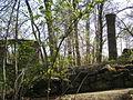 Klosterpark Altzella.505.JPG